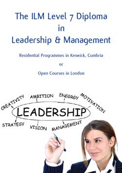 Download the the Strategic Leadership Brochure